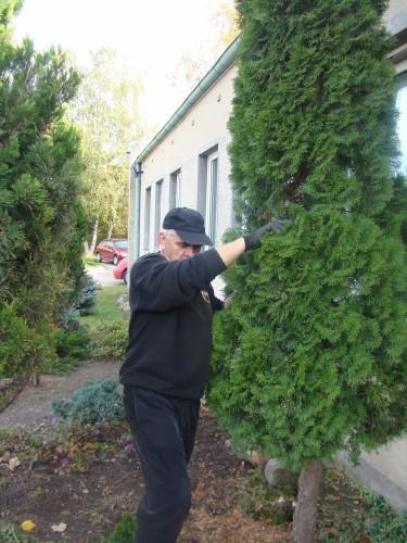 kurs-projektowania-i-zakladania-ogrodow(1)